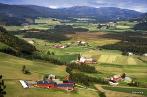 Utsikt fra Stavenberget